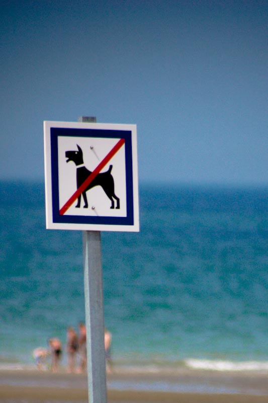 You are browsing images from the article: A la plage
